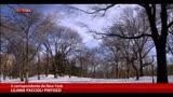 22/01/2014 - Usa, ondata di neve a New York:prime polemiche per De Blasio