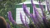 26/06/2014 - Wimbledon, splende il sole sulla quarta giornata