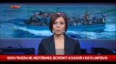 24/08/2014 - Nuova tragedia nel Mediterraneo, recuperati 18 cadaveri