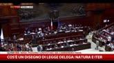 Cos'è un disegno di legge delega: natura e iter