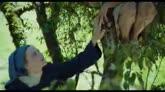 05/11/2014 - MARIE HEURTIN - il trailer