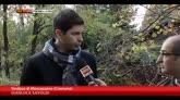 13/11/2014 - Vittima maltempo a Crema, il racconto del sindaco