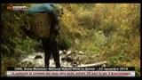 Cina, fuori pericolo le scimmie vittime del bracconaggio