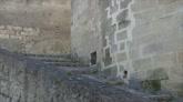 Alessandro Borghese 4 Ristoranti: occhio al gradino!