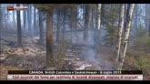 Incendi nel Canada occidentale