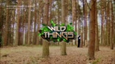 Wild Things e il canto del gallo