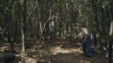 I Delitti del BarLume: una valigetta nel bosco