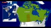 Sparatoria in scuola canadese, 4 morti