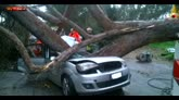 Albero cade e schiaccia auta ad Ardea, 2 morti