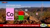 Nel Viterbese si coltiva accanto ai campi contaminati