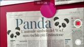 Edicola Fiore - puntata 5: il Panda