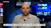 25/07/2016 - Legalizzazione Cannabis, l'intervista a Roberto Saviano
