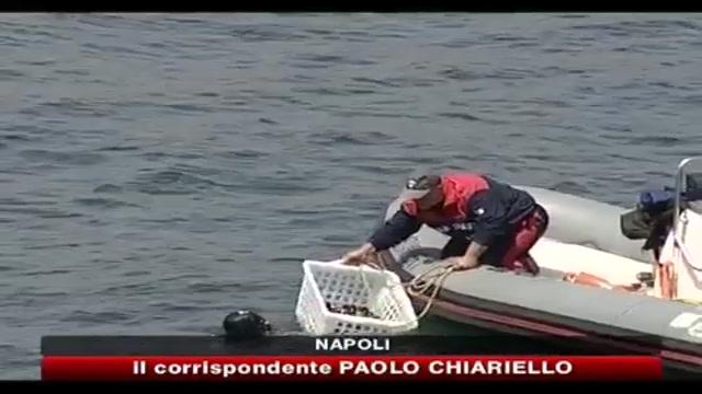 Napoli, sequestrate 5 tonnellate di cozze inquinate