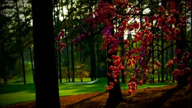 Golf Augusta Master