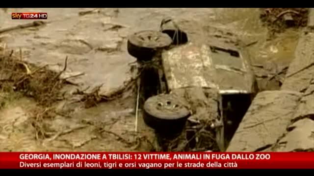 Georgia, forte alluvione a Tbilisi