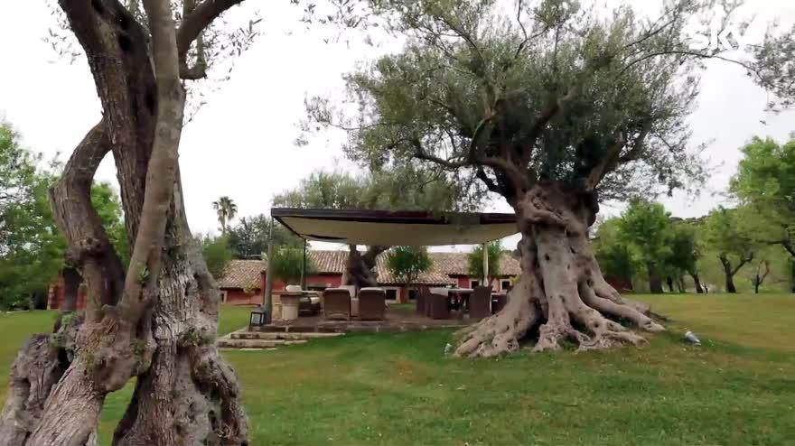 Un sogno in affitto – Paola Marella: le 3 ville in Sicilia.