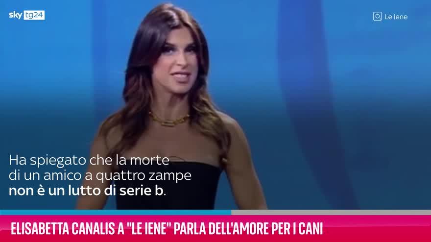 "VIDEO ""Le Iene"", Elisabetta Canalis e l'amore per i cani"