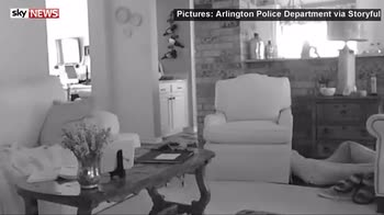 Sadie the chihuahua scares off intruder