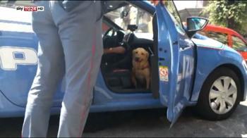 Cane salvato dalla polizia, il video diventa virale