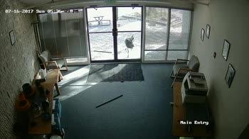 Ufficio vandalizzato da chi?