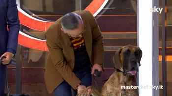 "Tecla: il cane ""di classe"" di Barbieri"