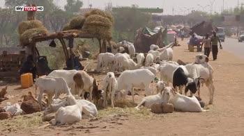 Niger, dubbi sul ruolo dei militari stranieri
