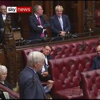 Boris skewered by Lib Dem peer in Lords