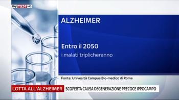 Alzheimer, scoperta causa degenerazione ippocampo