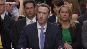 zuckerberg elezioni