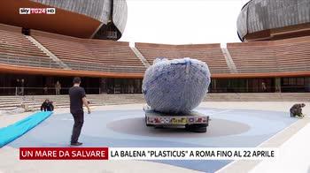Plasticus, a Roma la balena di plastica
