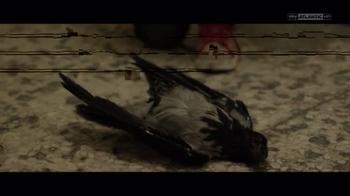 Il Miracolo, l'uccello caduto