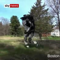 I'll be back, in a bit: robot runs and jumps