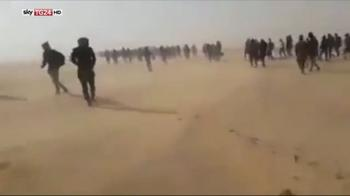ERROR! 13mila migranti abbandonati nel deserto dall'Algeria