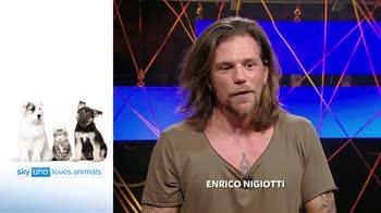 Sky Uno Loves Animals 2: Enrico Nigiotti