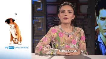 Sky Uno Loves Animals 2: Serena Rossi