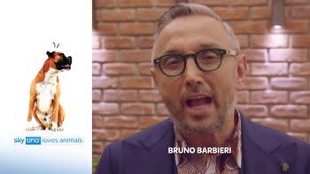 Sky Uno Loves Animals 2: Bruno Barbieri