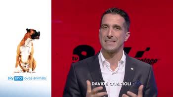 Sky Uno Loves Animals 2: Davide Camicioli