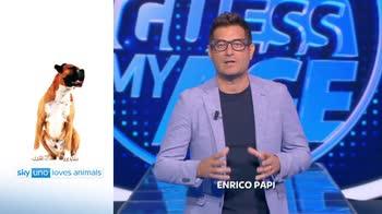Sky Uno Loves Animals 2: Enrico Papi