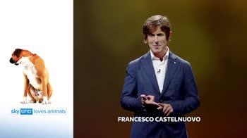 Sky Uno Loves Animals 2: Francesco Castelnuovo