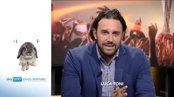 Sky Uno Loves Animals 2: Luca Toni
