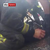 Firefighters rescue dog and perform CPR on it