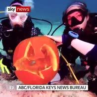 Pumpkin carving... under the sea