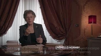 Palermo tra le righe: S. A. Hornby e l'identità riscoperta.