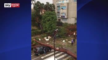 ERROR! Maltempo, sindaco di Terracina: un morto e diversi feriti