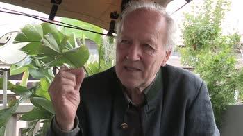 Cannes 2019: Werner Herzog