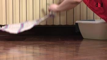 Housekeeping - Le pulizie periodiche di casa: le finestre
