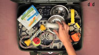 Cosa mettere in valigia...per il cane