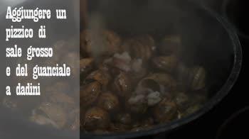 Ricetta lumache alla Giorgiolino: come prepararle