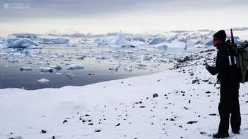 Antartide, la neve è verde per alghe visibili dallo spazio