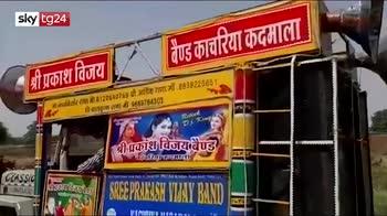 La minaccia delle locuste in India